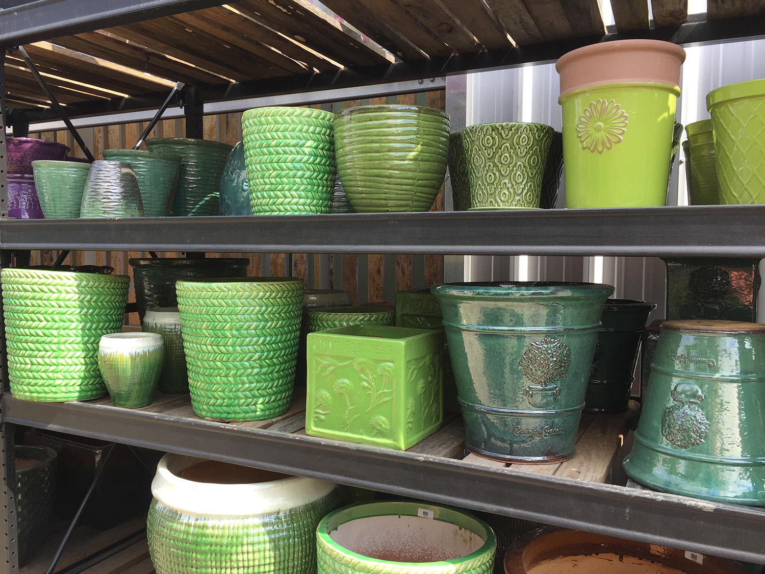 Outdoor Plant Pottery for Sale at Patuxent Nursery