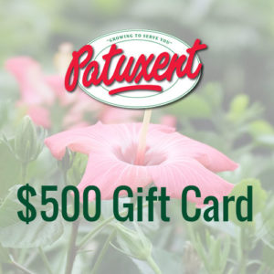 Patuxent Nursery Gift Card