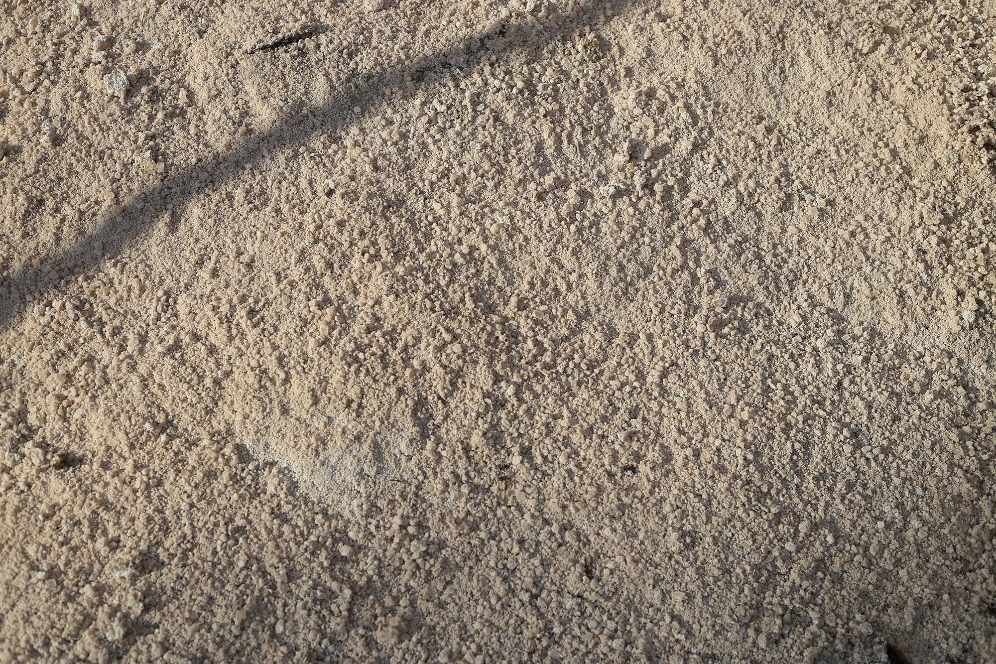Bulk Salt for Sale at Patuxent Nursery