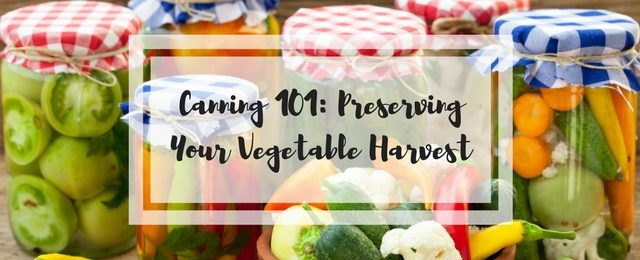 Canning 101: Preserving Your Vegetable Harvest