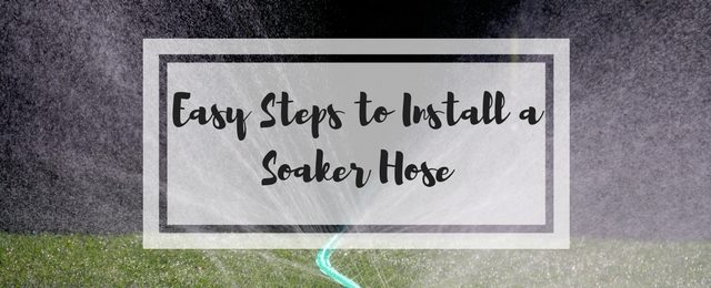 7 Easy Steps to Install a Soaker Hose