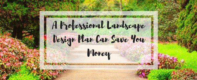 A Professional Landscape Design Plan Can Save You Money
