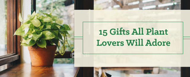 15 Gifts All Plant Lovers Will Adore - Patuxent Nursery, Bowie, MD