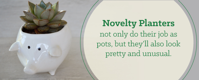 novelty planters as gifts - 15 Gifts All Plant Lovers Will Adore - Patuxent Nursery, Bowie, MD