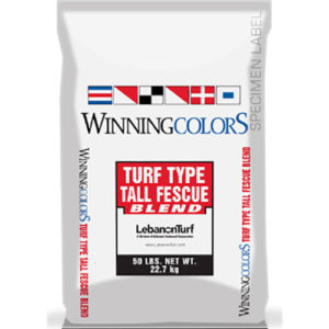Winning Colors Fescue Blend Grass Seed