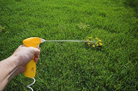Lawn Weed Killers - Lawn and Garden Care for Sale in Bowie, MD   Patuxent Nursery