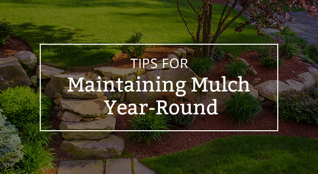 Tips For Maintaining Mulch Year Round