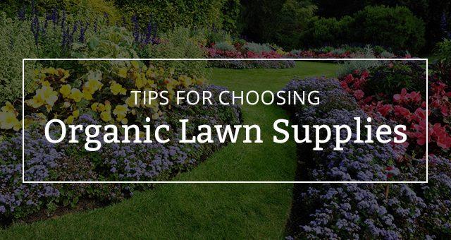 Tips for Choosing Organic Lawn Supplies