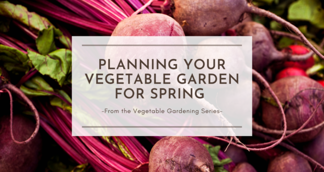Planning Your Vegetable Garden for Spring