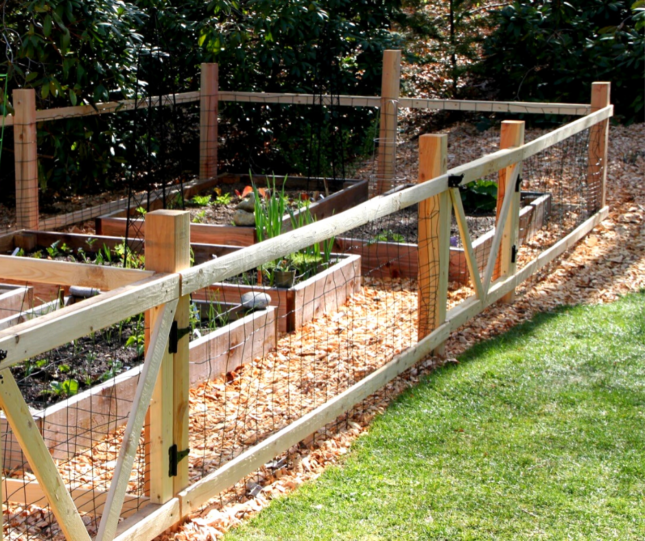 The #1 defense in vegetable gardening is building a fence