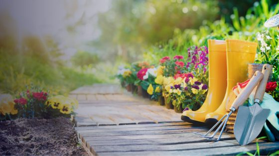 Garden Projects for When You're Stuck At Home