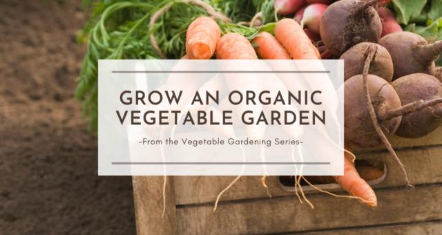 Grow an Organic Vegetable Garden