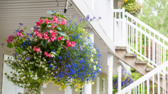 hanging baskets go great on a front porch