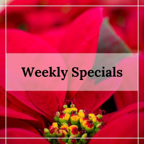 weekly specials with patuxent nursery