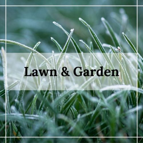 lawn and garden at patuxent nursery maryland