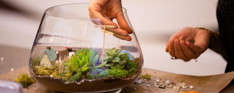 a person making a terrarium