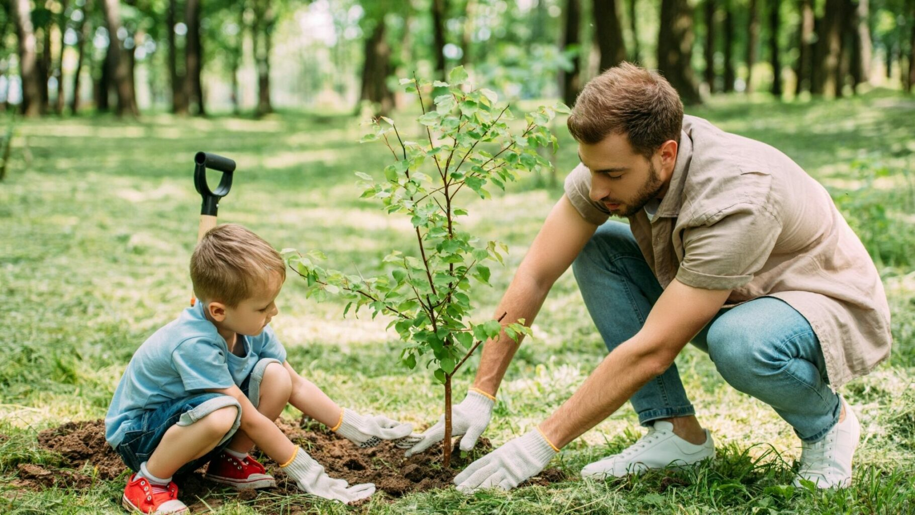 Father and Son Planting a Young Tree Together