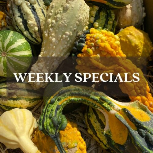 Fall Gourds weekly special