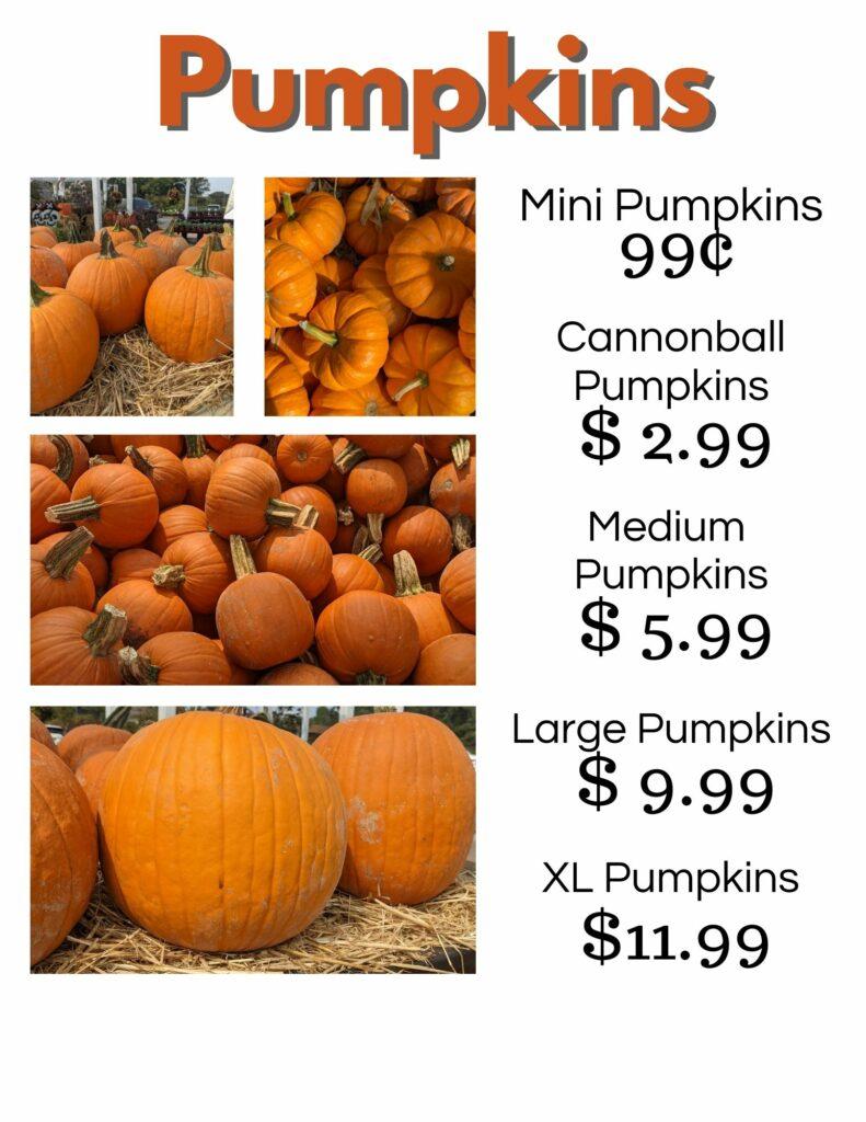 Pumpkin Prices