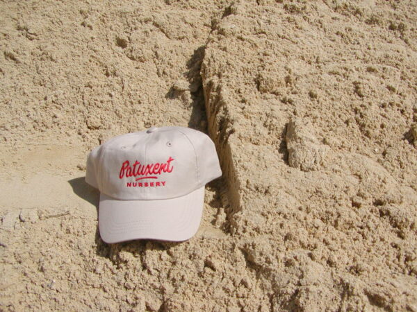 Bulk Concrete Sand Available at Patuxent Nursery in Maryland