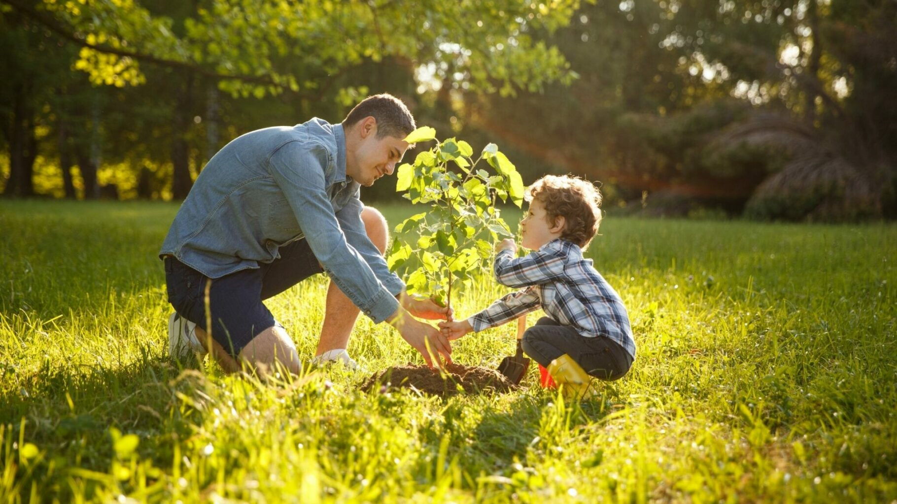 parent and child caring for a young tree