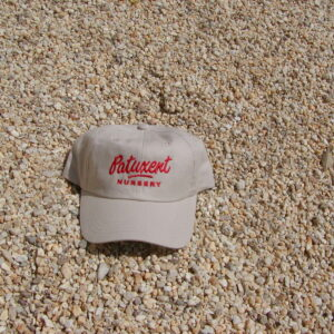 Pea Gravel for Paths for Sale at Patuxent Nursery