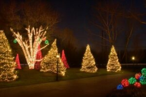lights wrapped around christmas trees in front yard