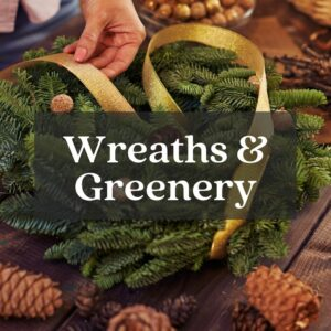 woman tying gold ribbon onto real christmas wreath with pineones