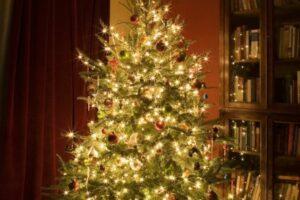 christmas tree lights inspiration photo