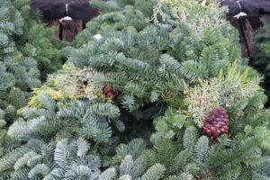 real fir wreaths in a pile