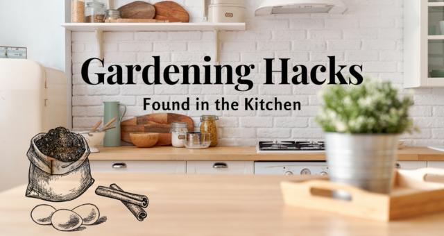 Gardening Hacks Found in the Kitchen